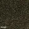 Lifestyle Carpets - Canterbury - Biscotti